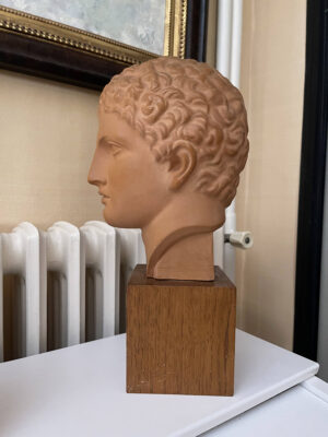 Terracotta Bust Roman Head Male 1920s French 3