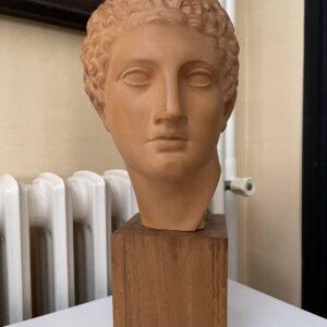 Terracotta Bust Roman Head Male 1920s French 4