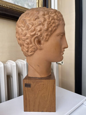 Terracotta Bust Roman Head Male 1920s French 6